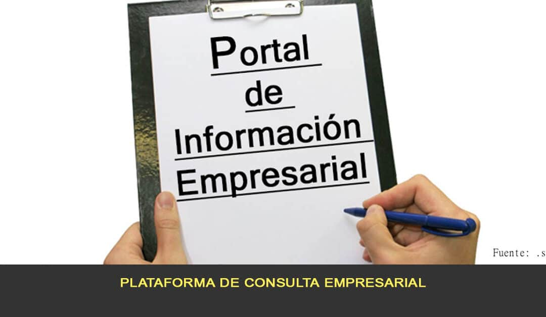 Plataforma de consulta empresarial