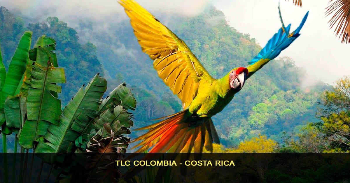 TLC Colombia - Costa rica