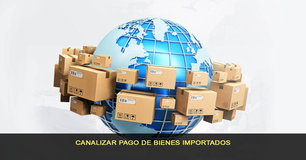 Canalizar pago de bienes importados