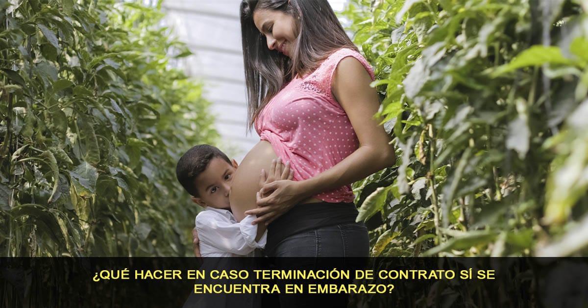 ¿Qué hacer en caso terminación de contrato sí se encuentra en embarazo?