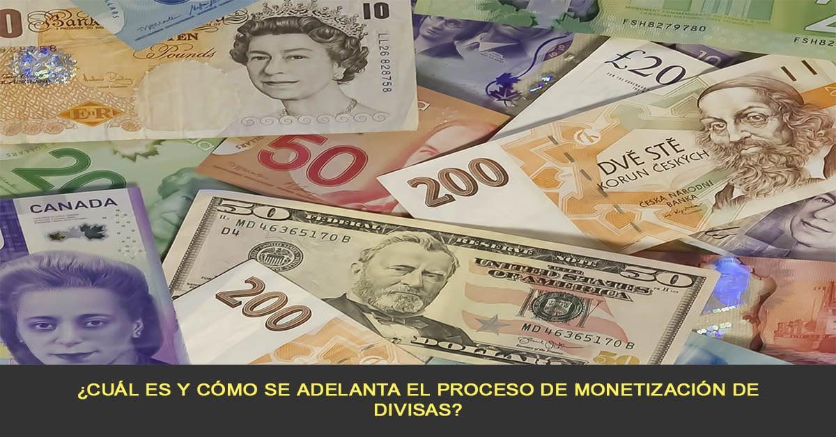 ¿Cuál es y cómo se adelanta el proceso de monetización de divisas?