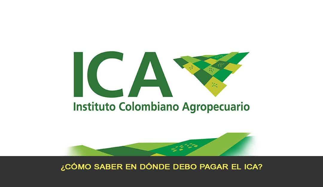 ¿Cómo saber en dónde debo pagar el ICA?